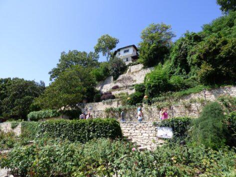 Аллеями ботанического сада в Балчике