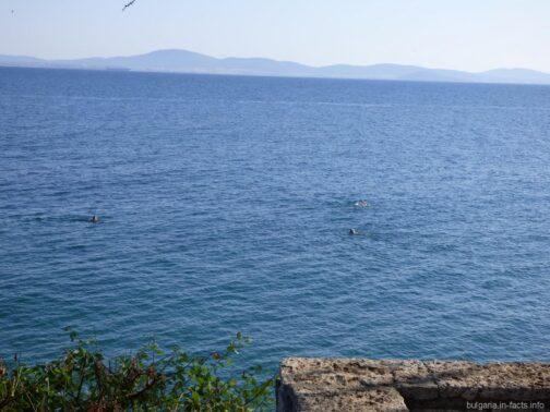 Вид на море и горы с набережной Поморья