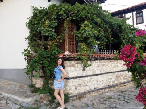 Виноград в Старом Несебре