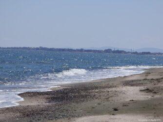 Дикие пляжи у Поморийского озера