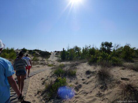 Дорога к пляжам Солнечного берега