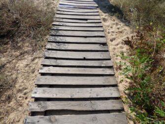 Дорожка к пляжам Солнечного берега