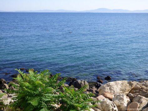 Красивое море в Болгарии фото