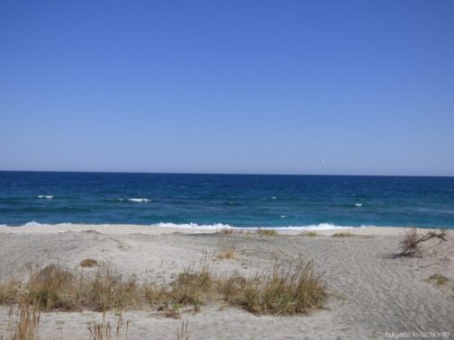 Красивый дикий пляж на Поморийской косе