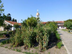 Небольшой огород на территории монастыря Святого Георгия