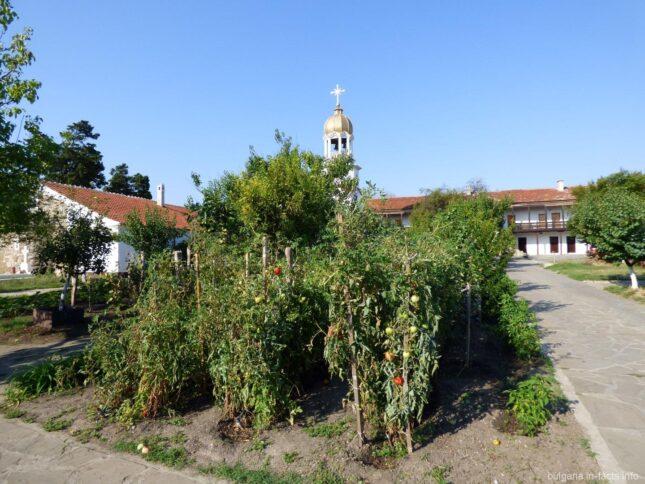 Огород в монастыре в Болгарии