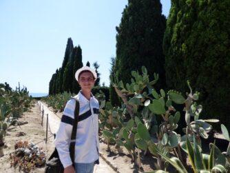 Открытая коллекция кактусов в Балчике