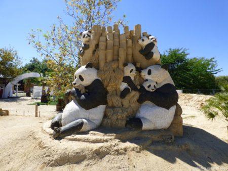 Песчаные панды