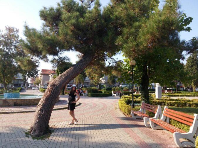Симпатичный парк в новой части Поморье