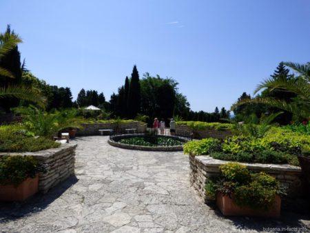 Флора ботанического сада