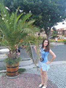 Пальма в старом Несебре