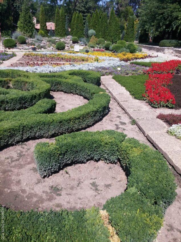Интересный дизайн сада в Балчике