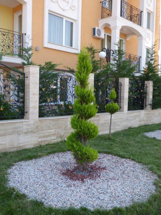 Декор кустарников возле одной из гостиниц на Солнечном берегу