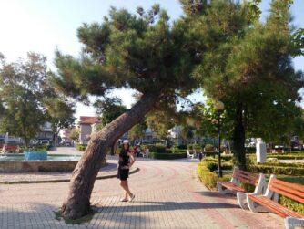 Большой парк в Поморьи Болгария