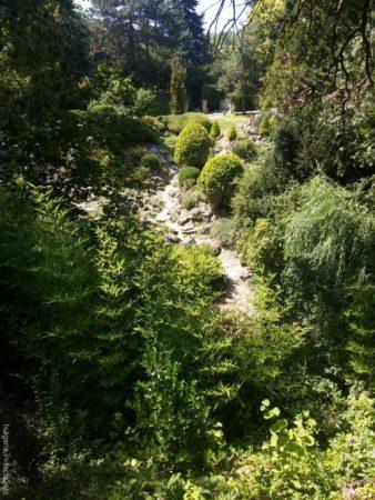 Живописные пейзажи в ботаническом саду Балчика
