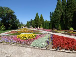 Клумбы с цветами в ботсаде Балчика